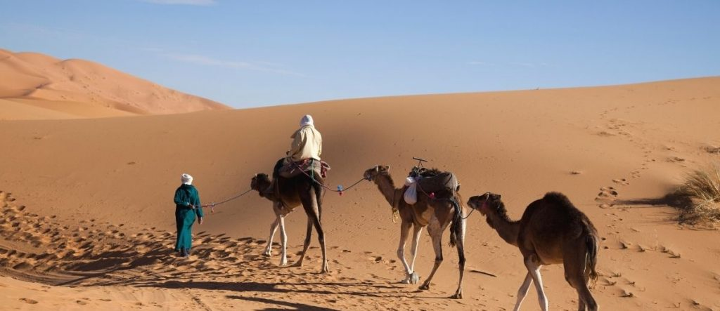 5-Day Desert Tour from Casablanca