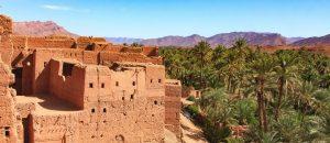 8-Day Desert Tour from Casablanca