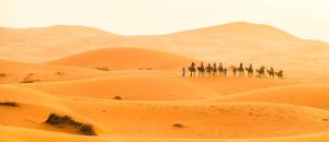 9-Day Desert and Imperial Cities Tour from Marrakech